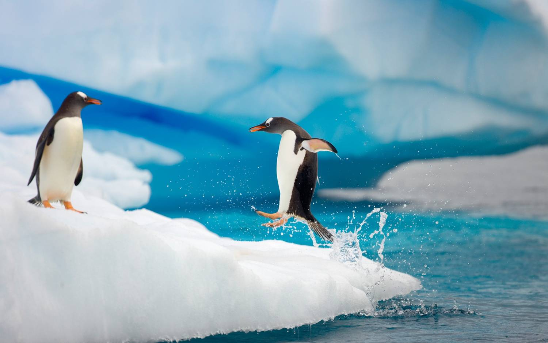 Coldest countries - Antarctica